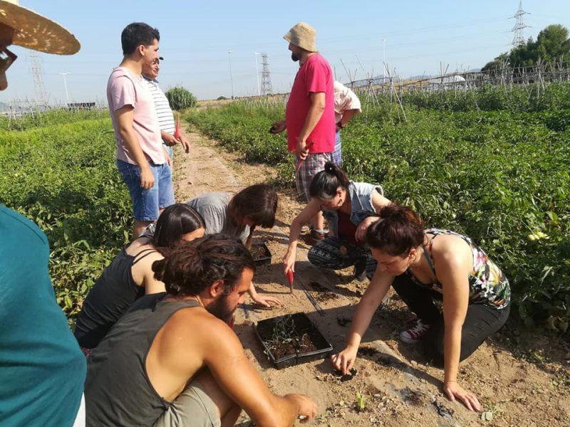 Oberta la convocatòria per a produir un documental sobre el projecte europeu Food Relations